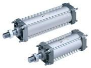 Xy lanh khí dạng tiêu chuẩn: CA2/CDA2